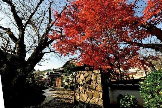 フレンチレストラン 「桜下亭」